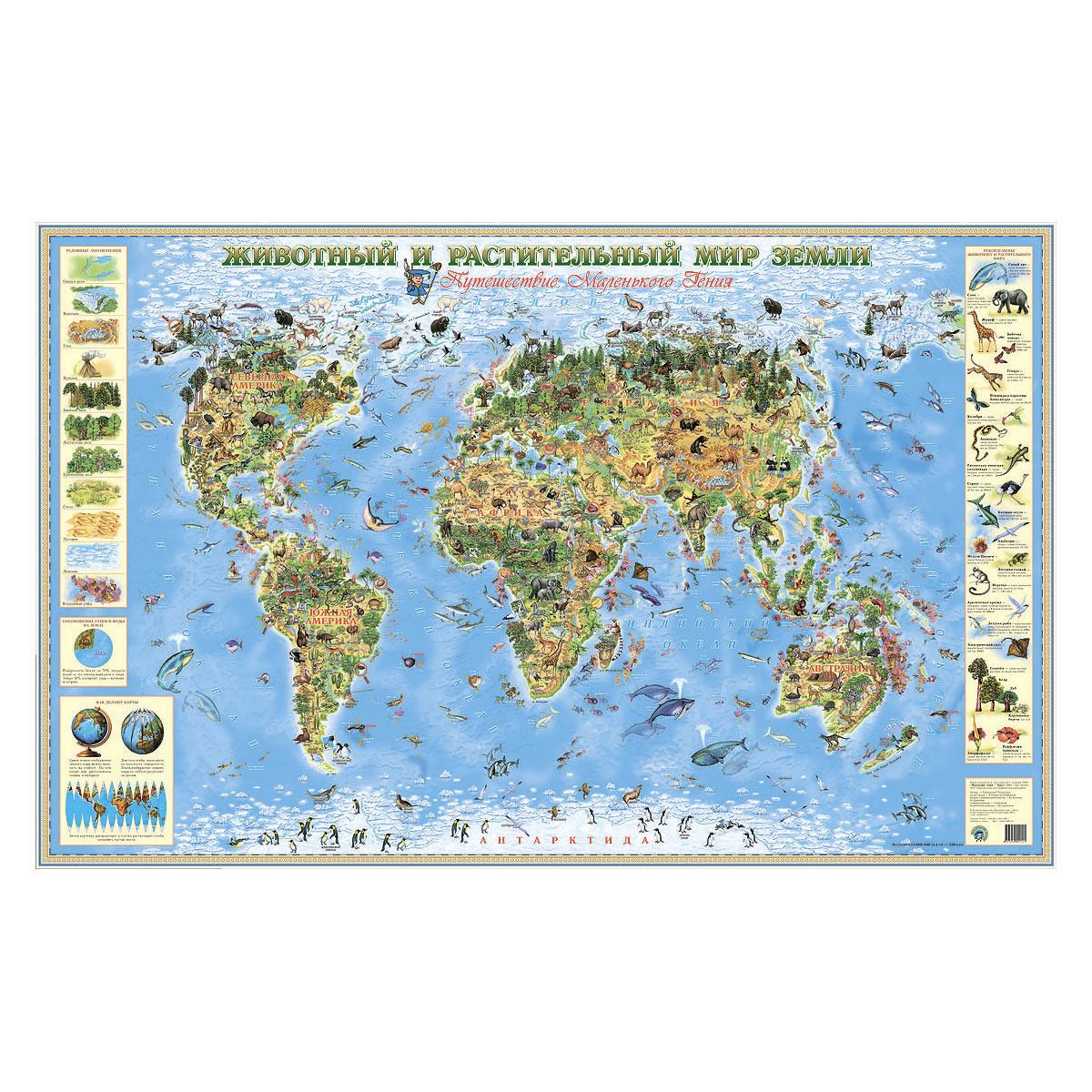 Карта Маленький гений Животный и растительный мир Земли<br>