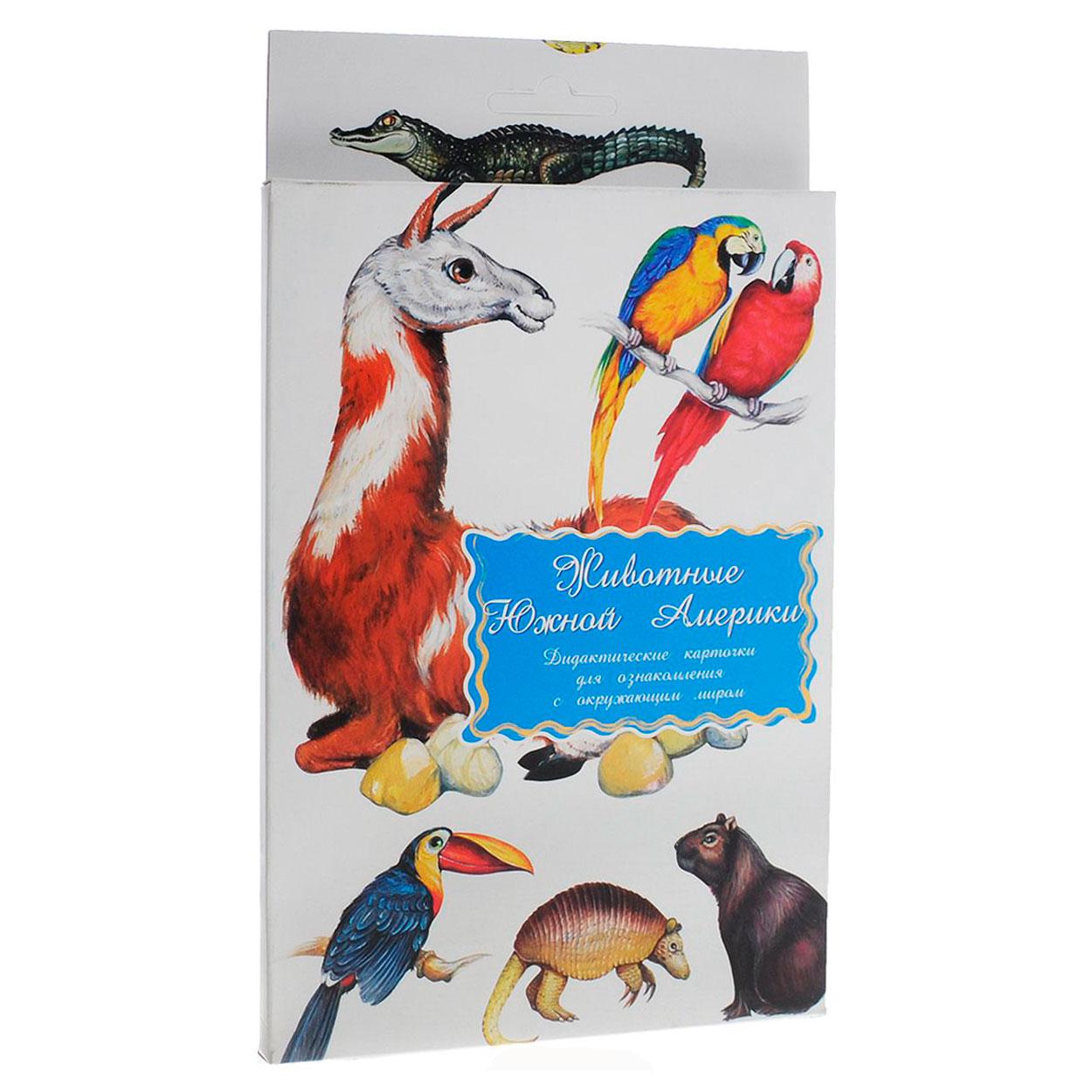 Дидактические карточки Маленький гений Животные Южной Америки<br>