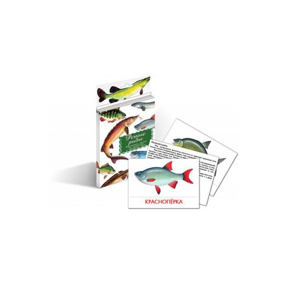 Дидактические карточки Маленький гений Речные рыбы<br>