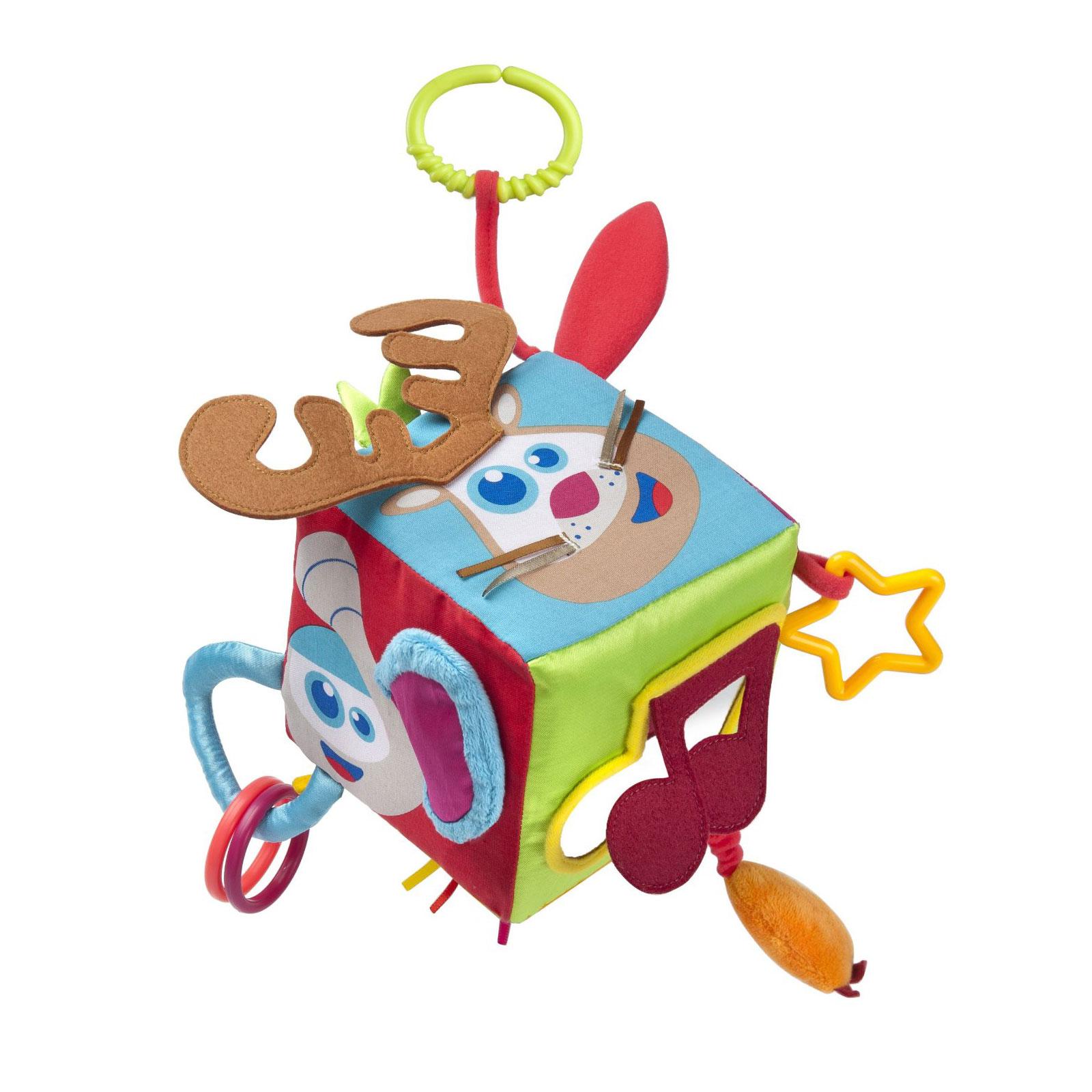 Развивающая игрушка Baby Moov куб с разъемным кольцом