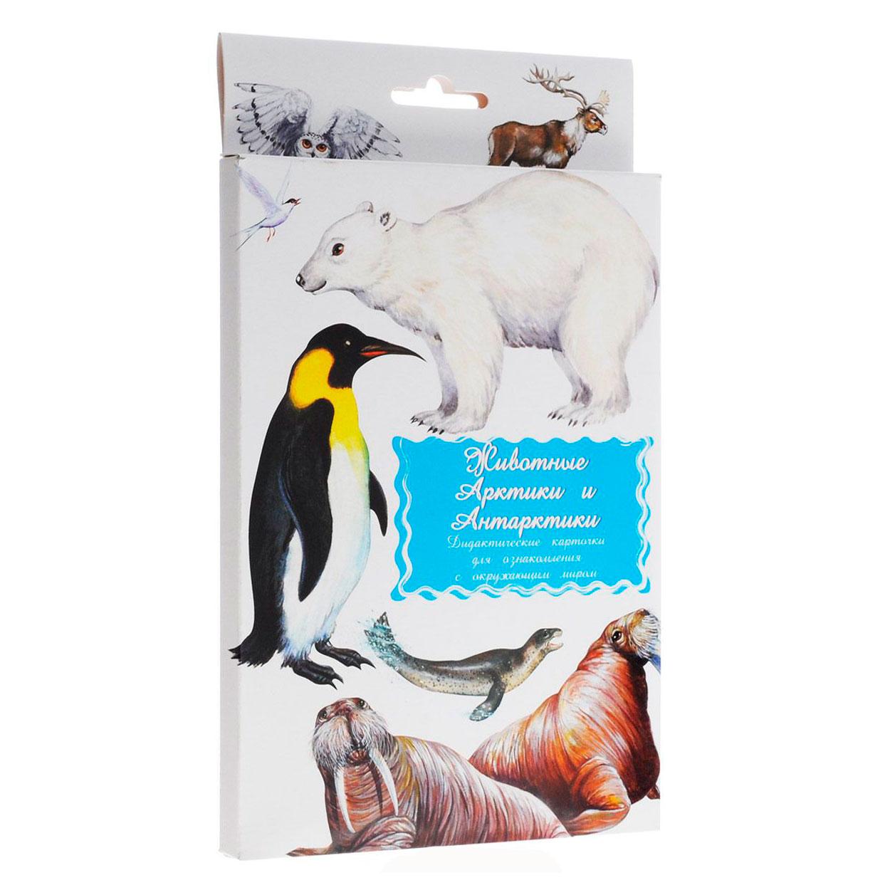 Дидактические карточки Маленький гений Животные Арктики и Антарктики<br>