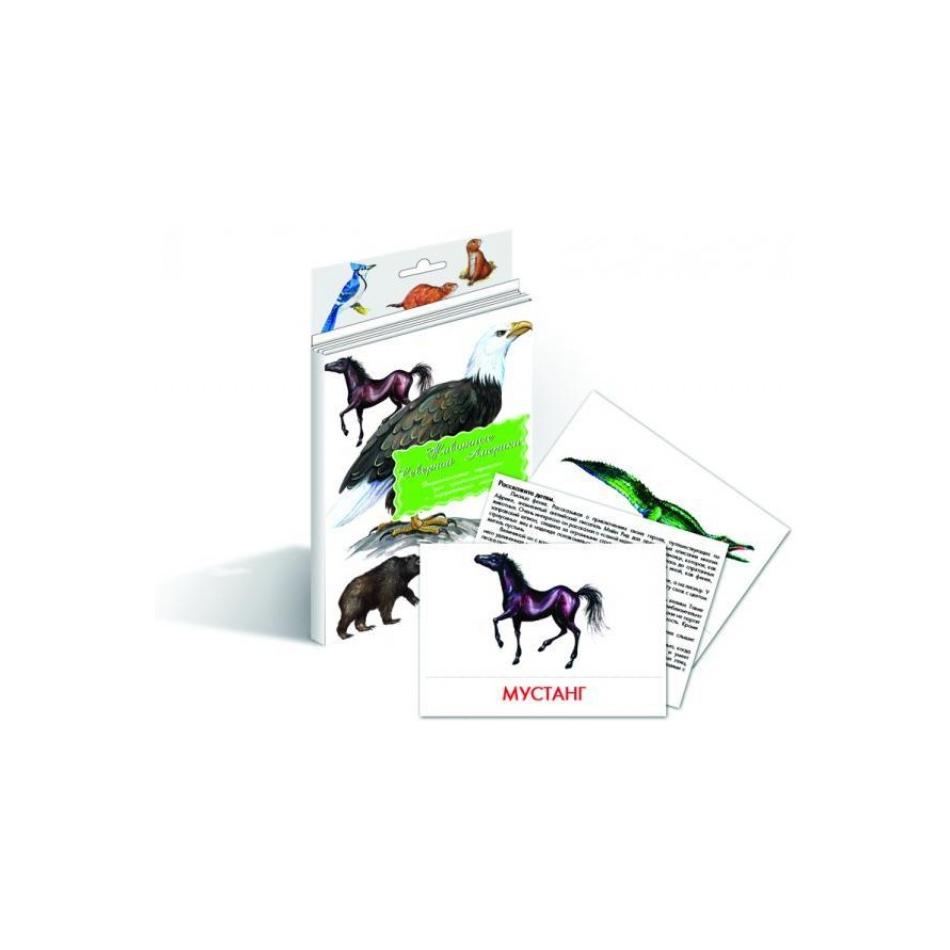 Дидактические карточки Маленький гений Животные Северной Америки<br>