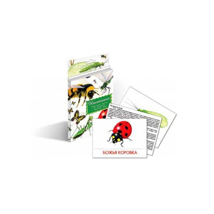 Дидактические карточки Маленький гений Насекомые