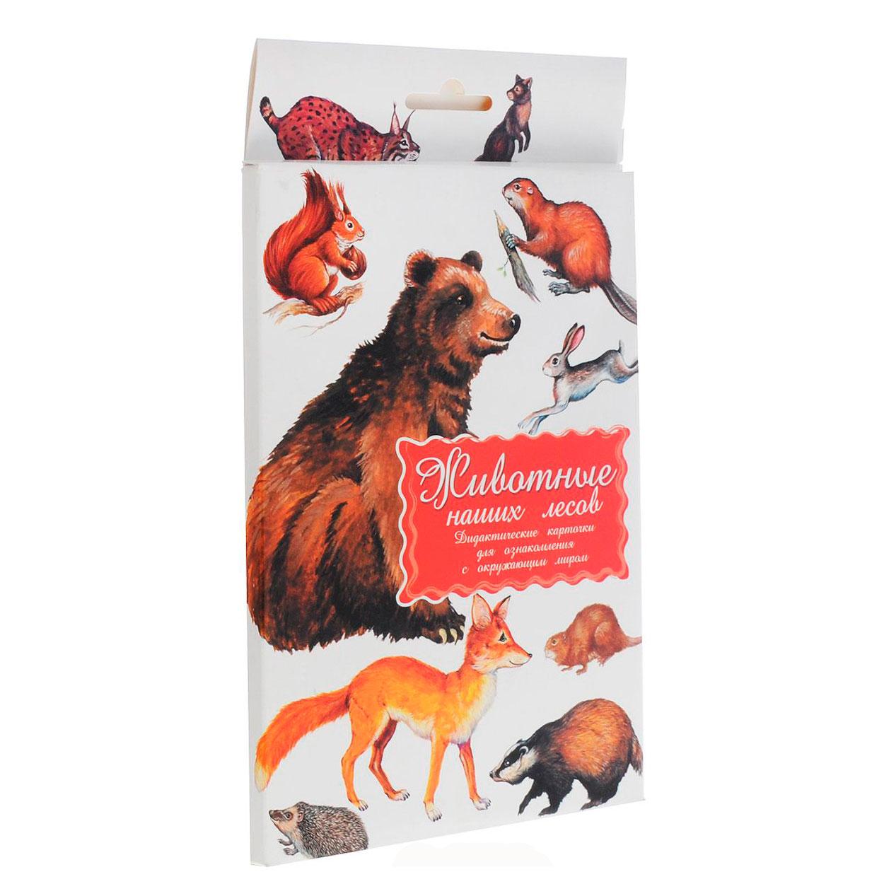 Дидактические карточки Маленький гений Животные наших лесов<br>