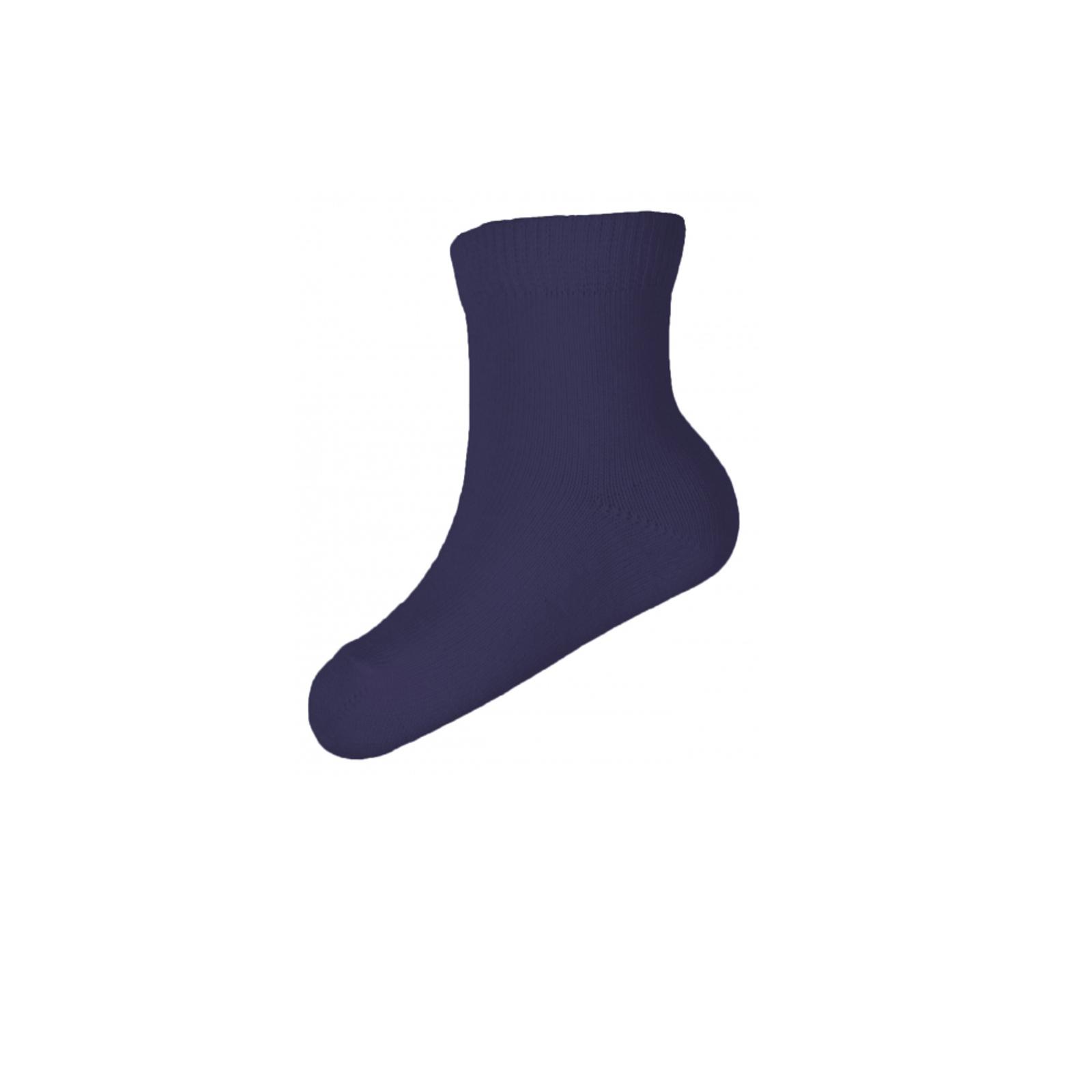 Носки Milusie модель 52 гладкие размер 9-10