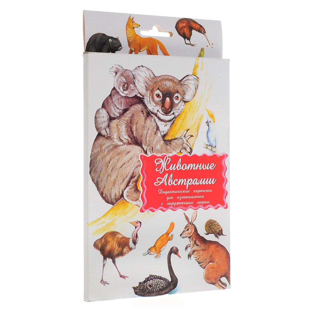 Дидактические карточки Маленький гений Животные Австралии<br>