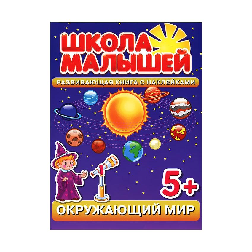 Окружающий мир Окружающий мир. Развивающая книга с наклейками для детей с 5-ти лет Разин С.<br>