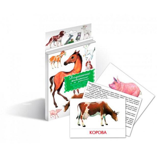 Дидактические карточки Маленький гений Домашние животные<br>